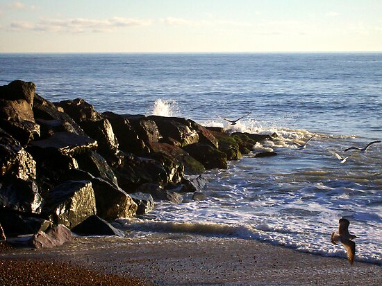 Rottingdean Rocks by Michael  Addison
