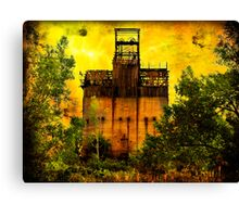 Haunted By A Dream Canvas Print