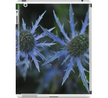 Sea Holly - Eryngium zabelii 'Big Blue' iPad Case/Skin