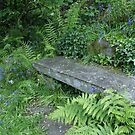 Garden bench, Dove Cottage, Grasmere by BronReid