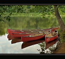 Canoes at Rest Clinton, NJ by Bridges