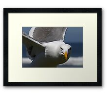 What are You Looking at?  Land Lover!!!  Framed Print