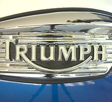 Triumph by Christopher Houghton