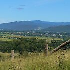 Looking Over Gloucester, NSW, Australia. by Margaret Stockdale