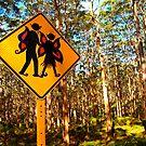 """""""Forest Elves"""" Western Australia by wildimagenation"""