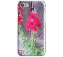 Snap Dragons iPhone Case/Skin