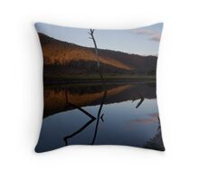 Calm afternoon. Throw Pillow