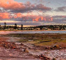 Daybreak - Long Reef, Sydney, Australia (Panorama 25 Exposures) by Philip Johnson