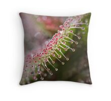 Sundew Sparkles Throw Pillow
