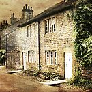 Downham Cottages by Catherine Hamilton-Veal  