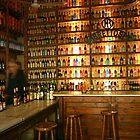 The Bar by Dani Peipert