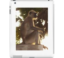 Monkey Magic iPad Case/Skin