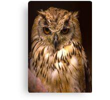 Owl #2 Canvas Print