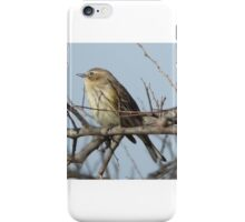 Bird on a branch. iPhone Case/Skin