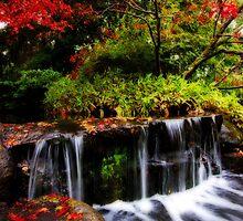 Orton Falls by Tammy Hale