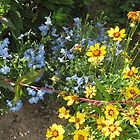 YELLOW AND BLUE FLOWERS by paintnpot