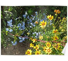 YELLOW AND BLUE FLOWERS Poster
