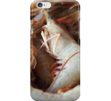 Raw Prawns iPhone Case/Skin