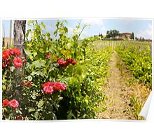 Tuscany Villa and Roses Poster