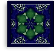 The Snowflake Shawl Canvas Print