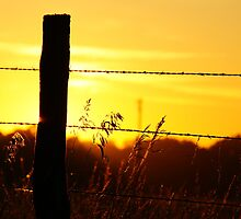 Silhouetted fencepost at sunrise by agenttomcat