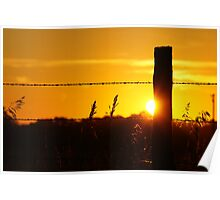 Sun peeking around a fencepost Poster