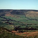 The valley turns green from the bottom up by nealbarnett