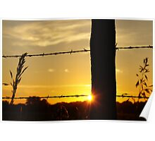 Sunrise fencepost with more color Poster