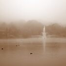 Sullivan's Pond by murrstevens