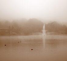 Sullivan's Pond by murrstevens