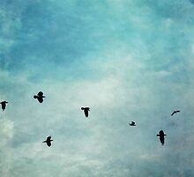 As the ravens fly by Priska Wettstein