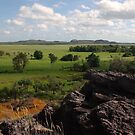An aspect of Kakadu by georgieboy98
