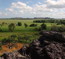 An aspect of Kakadu by georgieboy98