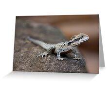 Reptile Park 3 Greeting Card