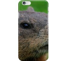 Woodchuck Profile iPhone Case/Skin
