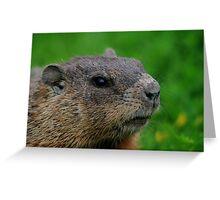 Woodchuck Profile Greeting Card