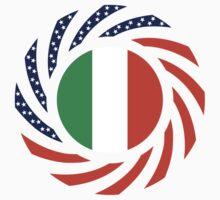 Irish American Multinational Patriot Flag Series by Carbon-Fibre Media