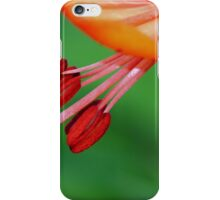 Lily...Come Dance with Me iPhone Case/Skin