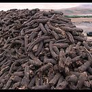Hand-Cut Peat Fuel - Donegal by Ferdinand Lucino