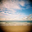 Holga - Park Beach by David Reid