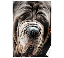 I have a wrinkle or two! Poster