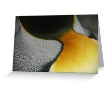 King Penguin Feathers Greeting Card