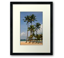 A palm lined beach in the tropics Framed Print