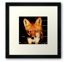WHO TURNED ON THE SUN!!! Framed Print