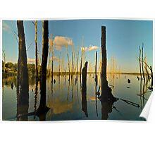 Manasquan Reservoir - 2 Poster