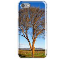 Springtime sunshine in the Barossa Valley iPhone Case/Skin
