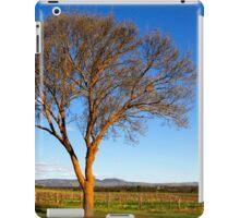 Springtime sunshine in the Barossa Valley iPad Case/Skin
