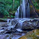 Somersby Lower Falls by Ian English