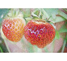 Strawberries Photographic Print
