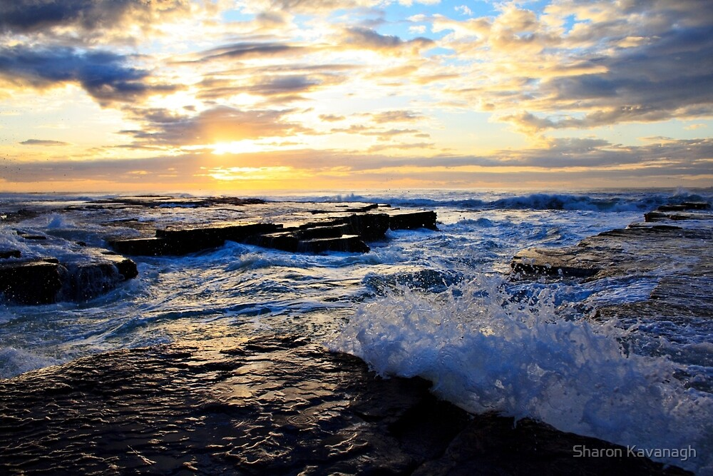 Coming to get you_Turimetta by Sharon Kavanagh